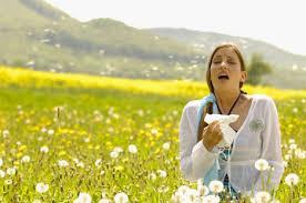 Recrudescence des allergies! dans Actualités VENTILAIRSEC sans-titre